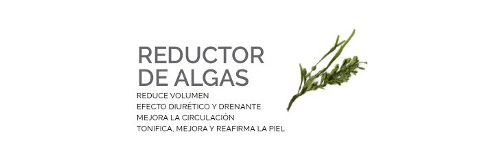 REDUCTOR DE ALGAS